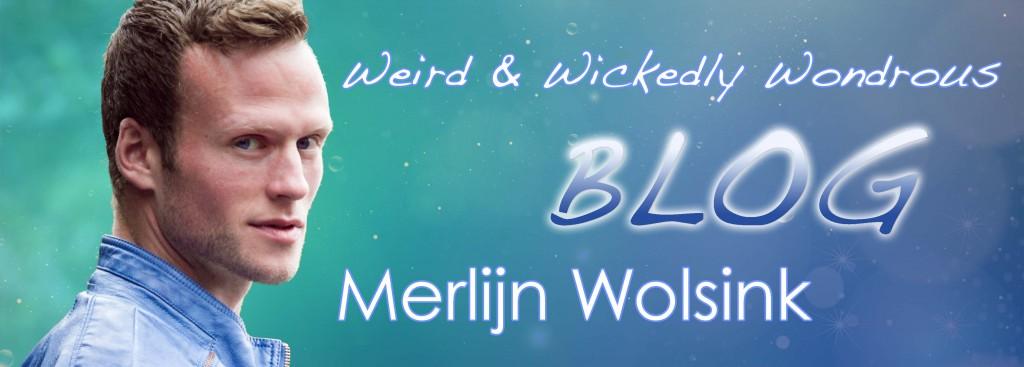 BLOG Merlijn Wolsink