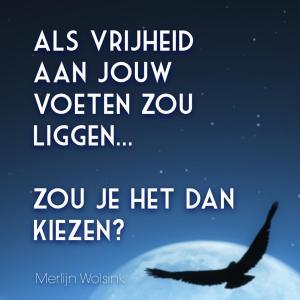 Merlijn Wolsink - Kies Vrijheid