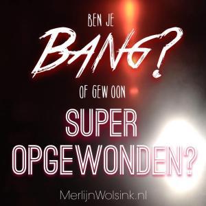 Merlijn Wolsink - Angst of opwinding - bang of opgewonden
